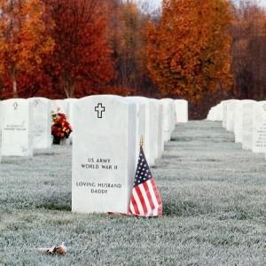 Veteran's day memorials